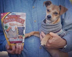 King Kalm Crunch, Sooth, & More CBD Pet Products