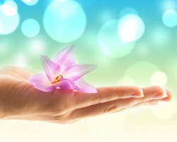Enquire for Crystal Healing Online Courses From Us