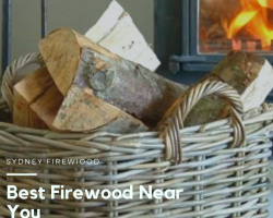 Firewood Buyers! Choose the Best Firewood Near You